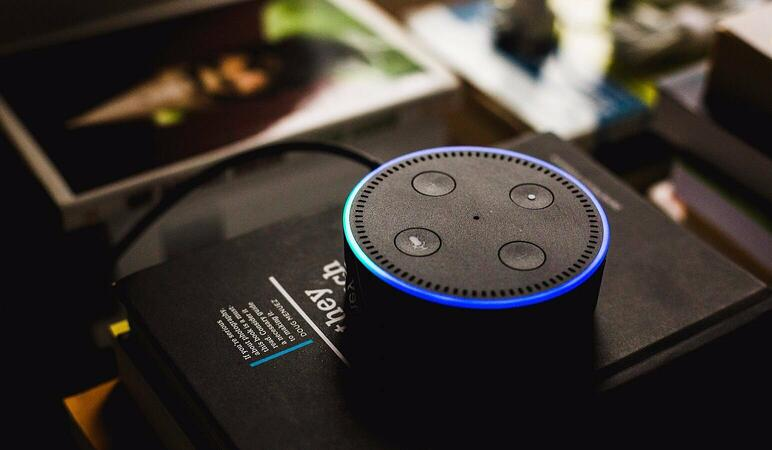 Voice assistants in ecommerce